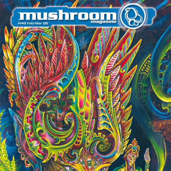 mushroom-2008-02-1