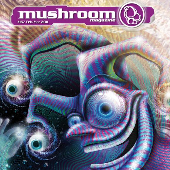 mushroom-2011-02-1