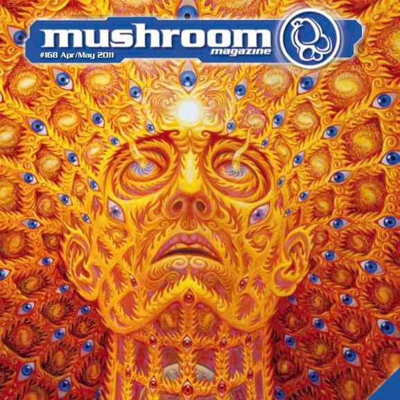 mushroom-2011-04-1