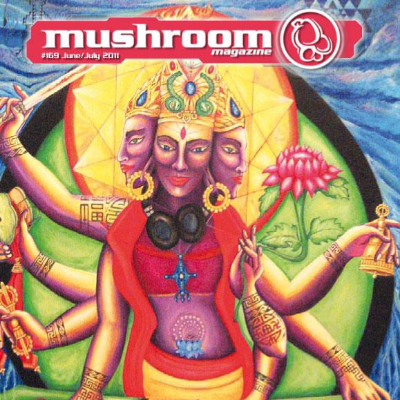 mushroom-2011-06-1