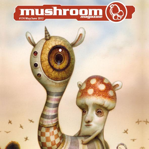 mushroom-2012-05-1