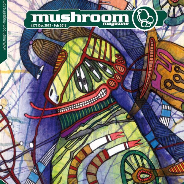 mushroom-2012-12-1